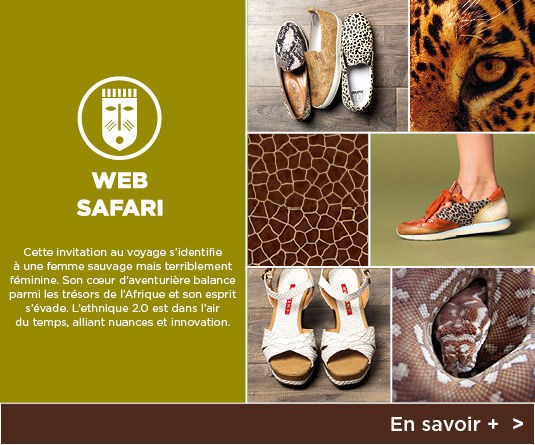 Web Safari